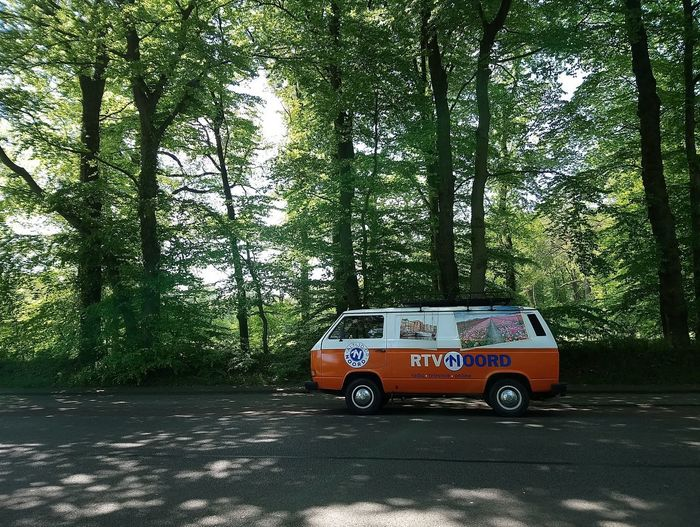 That van. Van Road Parked Vintage Vintage Cars Volkswagen Tree Street Scene Vehicle