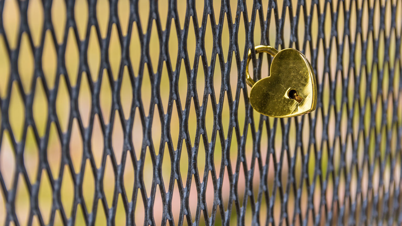 metal, no people, security, safety, close-up, protection, pattern, full frame, lock, day, backgrounds, door, rusty, outdoors, nature, design, entrance, handle, sunlight, animal, iron - metal