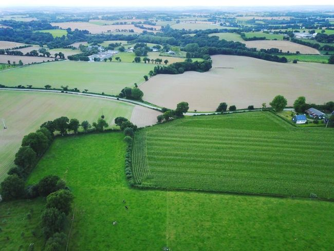Maël-carhaix Brittany Aerial View Agriculture Landscape Field Farm Rural Scene Scenics Green Color Beauty In Nature High Angle View Tranquil Scene Nature Tranquility Day Grass No People Patchwork Landscape Outdoors Tree Growth Sky