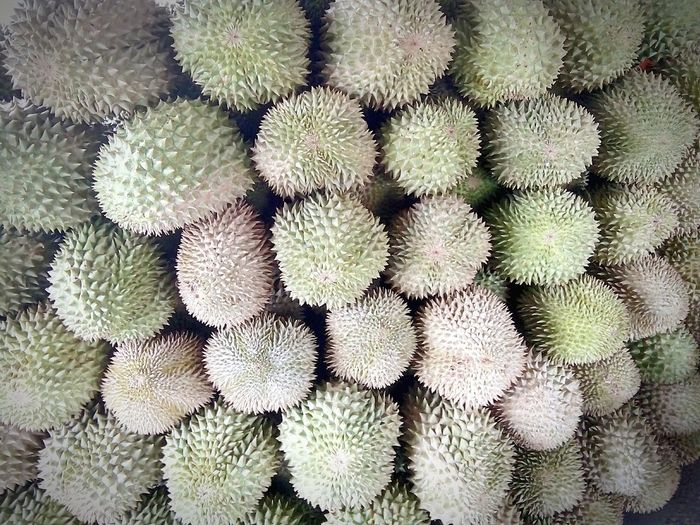High angle view of durians for sale at market