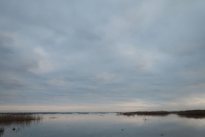 Endless... Endless Loneliness Marsh Beauty In Nature Cloud - Sky Clouds And Water Day Horizon Over Water Immensity Lake Nature No People Outdoors Reflection Scenics Sky Tranquil Scene Tranquility Water Waterfront