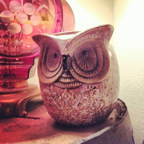 Meet the newest memeber of my household. My owl scentsy! ImInLove Lovemyhome iloveowls