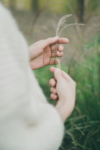 Close-up of woman hand holding plant over field