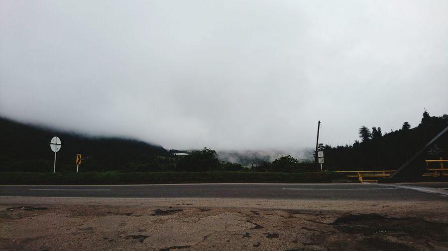 Fog_collection Sisga Cundinamarca Morning Verycold Sunday 6:00 A.m.