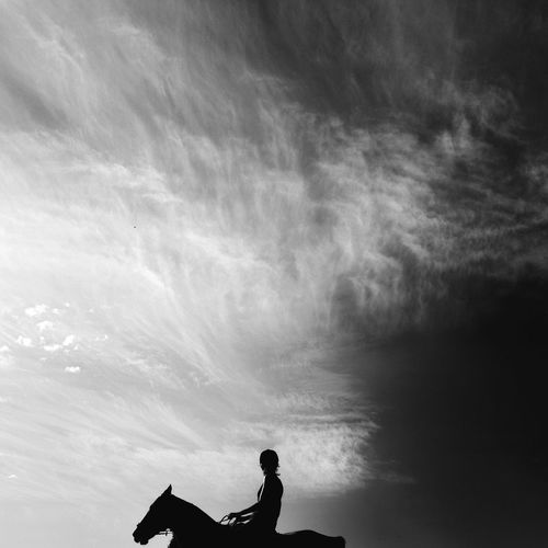 Silhouette Of Person On Horse