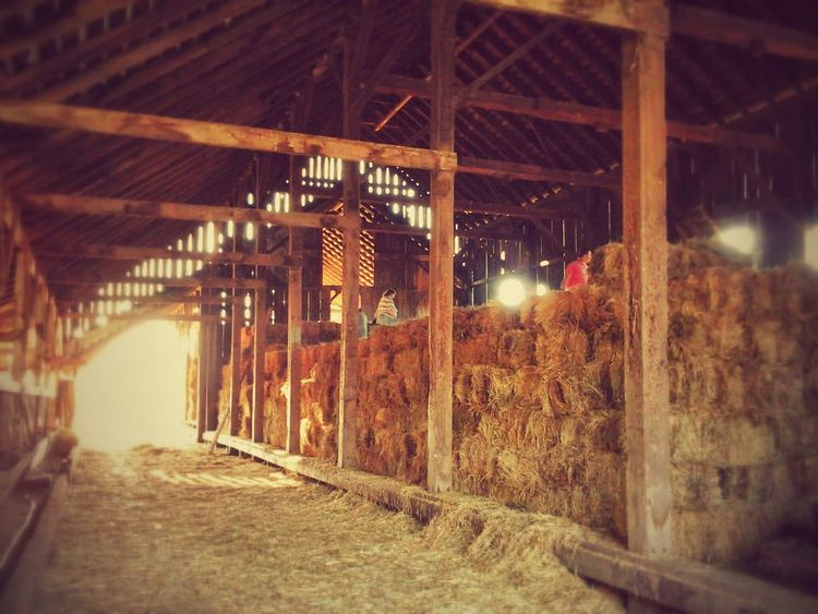 Taking Photos Check This Out Old Barns Ranch Life What I Did Today Family ~The haystack, day four~