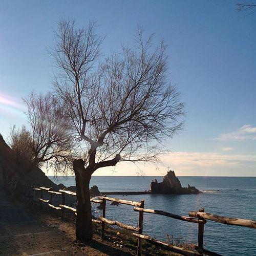 Buongiorno a tutto il 🌍 Rivatrigoso Liguria Mare Sea Ig_liguria Instalike Picoftheday Igfriends_liguria Instacool Insta_italia Photos_of_italy Italy Ig_fotoitaliane Instagramers Seaside Instamood Instagram_italia Ig_italy Instacoolpicture Like4like L4l Likeforlike Italia Igersliguria Igersitalia ig_liguria_ whatitalyis nexus5 nexus5photography beach