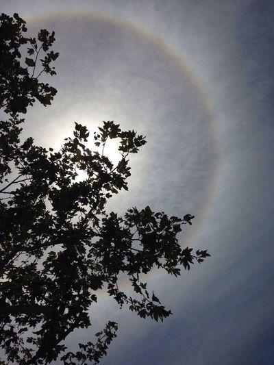 Rainbow around the Sun Beautiful Amazing