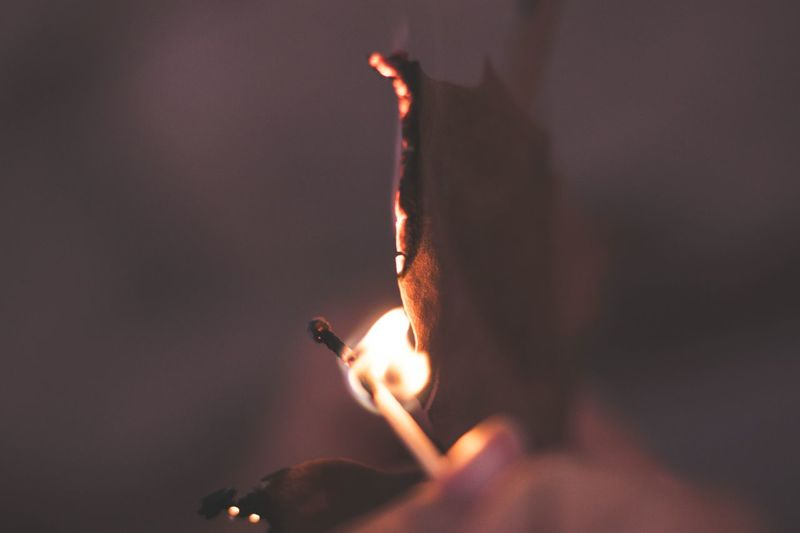 Close-up of burning paper
