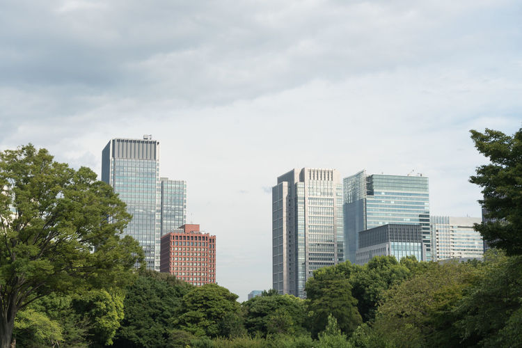 Trees and buildings in city against cloudy sky