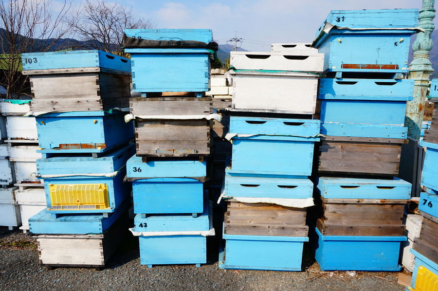 Everything In Its Place Pastel Power First Eyeem Photo Taking Photos Helloworld Walking Around Blue Blue Wave Human Vs Nature Box Bee Houses