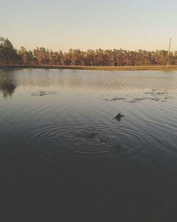 Photography Paraguay-Asuncion Photoshoot Nature Photography