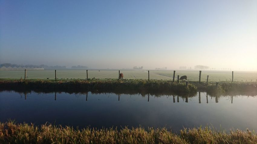 A beautiful autumn morning in tue Dutch Groene Hart. Water No People Outdoors Day Rural Scene Sky Tree Nature Nederland Nature Beauty In Nature Lost In The Landscape Zuidholland Nieuwkoop Landscape Groene Hart Travel Destinations Perspectives On Nature