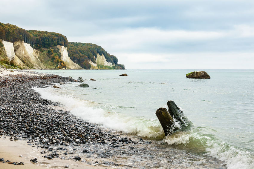 Baltic Sea coast on the island Ruegen, Germany. Autumn Autumn Colors Baltic Sea Chalk Cliffs Rügen Sky And Clouds Trees Beauty In Nature Cloud - Sky Coast Day Journey Landscape Nature No People Outdoors Relax Ruegen Scenics Shore Tourism Travel Destinations Trunk Vacation White Cliffs