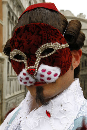 Venice, Italy Carnival Celebration City European  Event Hystorical Venetian Venice, Italy Canal Carnival Mask Colorful Hystorical Buildings Italian Italy Mask Carnival Venice Cat Purple Color Cat Man Hystorical Centre