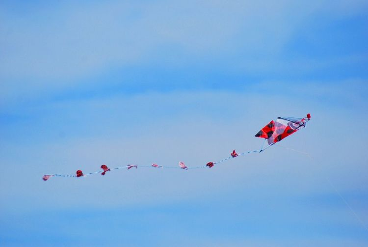 Low Angle View Of Kite Against The Sky