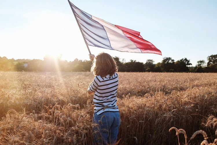 Rear view of boy standing with french flag on field against sky