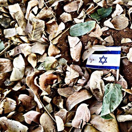 israeli In Tel Aviv Everyday Life In Israel