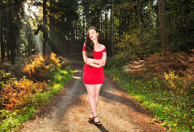 Beautiful young lady in a red dress in the forest Girl Millenial Young Lady Red Dress Red Red Color Red Lipstick Forest Trees Beauty Beautiful Woman Beautiful Long Hair Full Body Stunner Beautiful Young Lady Beautiful Young Woman Autumn Autumn colors autumn mood Spooky Trees Spooky Tree One Person Young Adult Full Length Young Women Fashion Outdoors Footpath