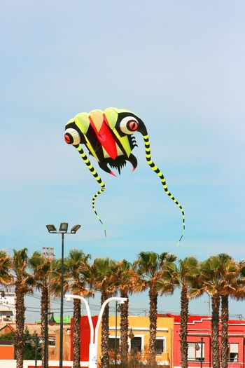 Wind Festival 2017, Valencia, Spain Beach Sports Flying Kite Kite Festival Kite Festival Valencia Kite Flying Kite In The Sky Lifestyles Low Angle View Multi Colored Sky Valencia, Spain Weekend Activities Paint The Town Yellow 100 Shades Of Yellow