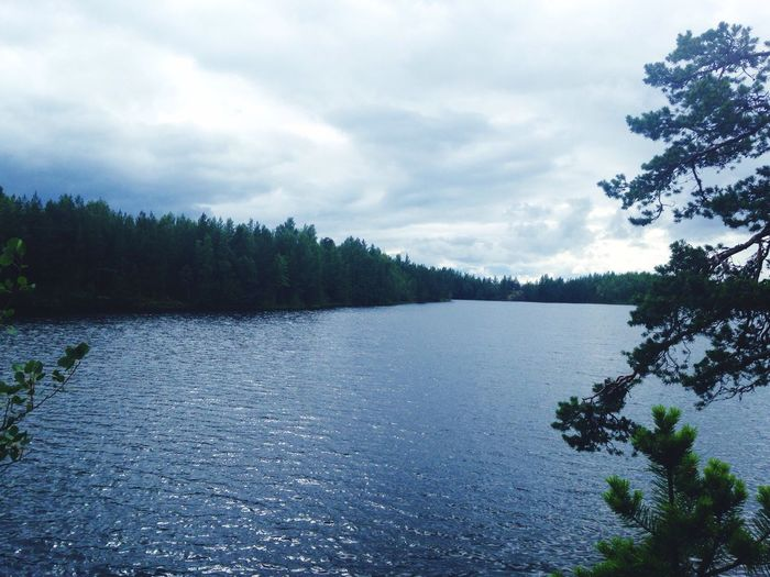 Summer Lake Trees Karelia Clouds Sky Saint Petersburg Traveling