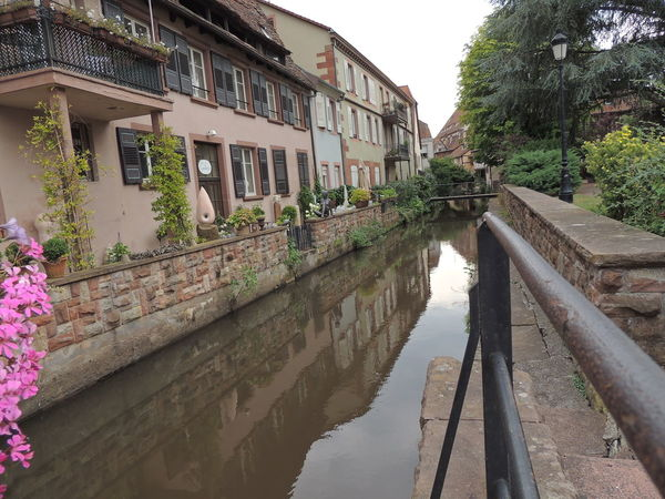 Alsace Alsace France Alsace Life Alsace Streets Alsacefrance Architecture Bridge Building Exterior Built Structure Canal Day House No People Old Town Outdoors Reflection Residential Building Residential District Residential Structure Town Tree Water Water Surface Waterfront Weathered