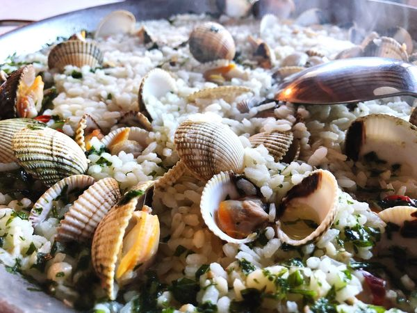 Cockle Rice Paddy EyeEm Selects Animal Shell Seashell No People Seafood Close-up Nature Day Food Outdoors Freshness Animal Themes Sea Life Beauty In Nature