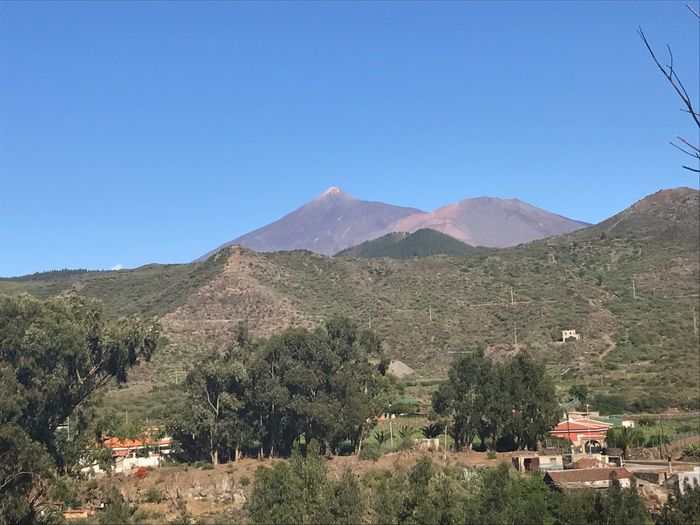 Teide Noroeste Mountain Clear Sky Mountain Range Blue Tree Day Outdoors No People Tranquility Landscape Nature Scenics Architecture Beauty In Nature Sky