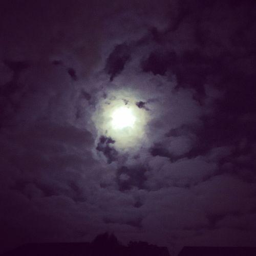 Quite night