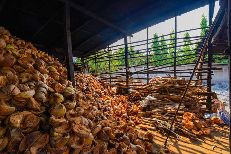 spathe for fuel keep dry in storehouse Fuel Coconut Coconut Shells Carbon Hot Heat Fire Tradition Fruit Stack Deforestation
