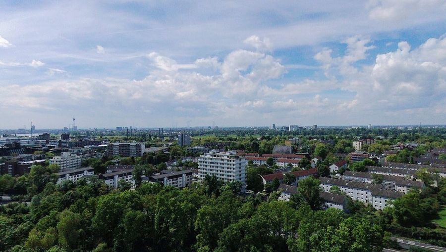 Eye in the sky Düsseldorf Skyline Dronephotography City Cityscape Tree Urban Skyline Agriculture High Angle View Sky Architecture Cloud - Sky Horizon Over Water Urban Sprawl District Terraced Field Aerial View Downtown Panoramic Settlement Blooming TOWNSCAPE