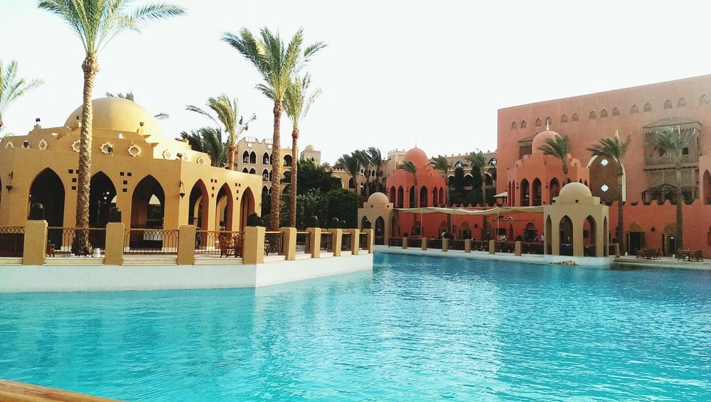 Palm Tree Water Architecture Swimming Pool Day Outdoors Urlaub ❤ Agypt Makadi Bay Handy Photo