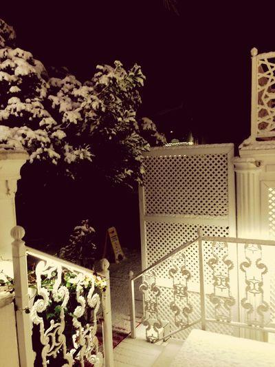 Snow ❄ Cold ?????