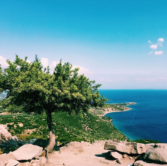 Skyncea Sky Sea