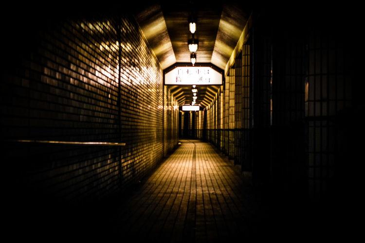 The Way Forward Corridor Indoors  Architecture Illuminated No People Day 地下道 奥行きシンドローム