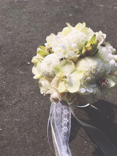 Flowers#nature#hangingout#takingphotos#colors#hello Worldflorafauna F Flower Nature Photo