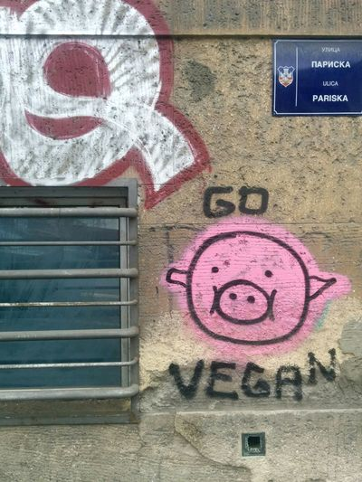Vegan Vegan Graffiti Street Belgrade Belgrade,Serbia Serbia Urban Wall Urban Wall Text Graffiti Close-up Street Art Neighborhood Spray Paint Contemporary