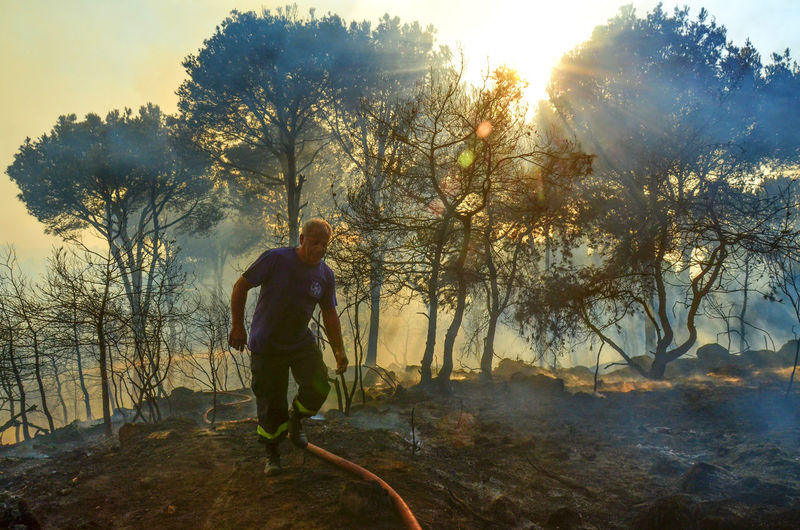 Firefighter after a day of putting out a forest fire in Lebanon Burning Disaster Fire Firefighter Firefighters Fireman Firemen Forest Forest Fire Lebanon Natural Disaster Pain People And Places Smoke