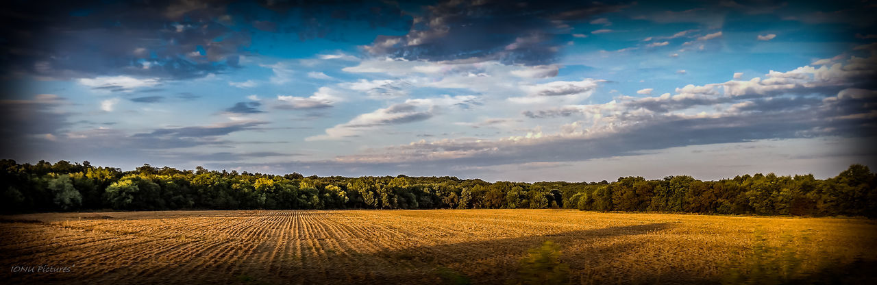 Cloud - Sky Agriculture Landscape Scenics No People Rural Scene Cereal Plant Nature Outdoors Beauty In Nature Sky