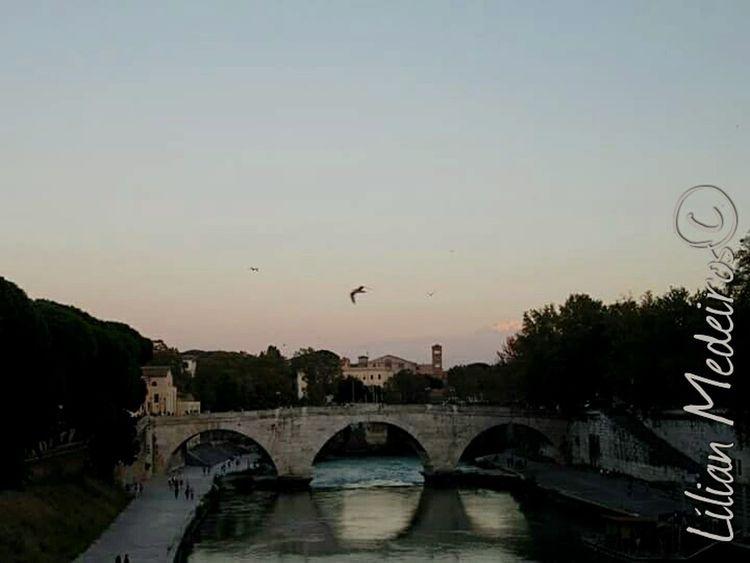 Italia Italy History Vacations Roma No People Reflexão
