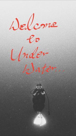 Scuba Diving Adventure Horror Ver. My Friend 40m Underwater Enjoying Life Travle