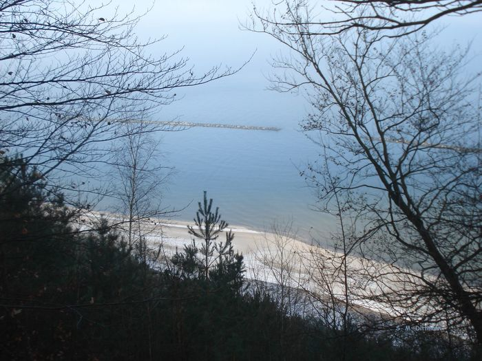 Blick Vom Streckelsberg Insel Usedom Strand Usedom Ostsee Beauty In Nature Landscape Nature No People Outdoors Water