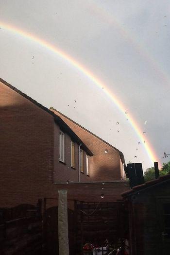 Rainbow in the garden??❤️- Rainbow Dubble Rainbow Garden Beautiful