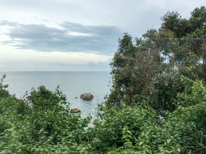 Xã Duong To, Phu Quoc Island, Vietnam. Beauty In Nature Day Food Growth Horizon Over Water Leaf Nature No People Outdoors Phu Quoc Plant Sea Sky Social Issues Tree Vietnam Water Xã Duong To