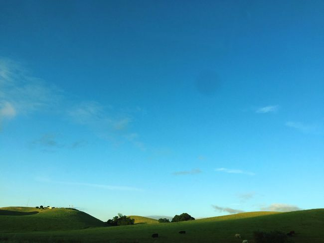 Blue Landscape Tranquil Scene Nature Tranquility Day Beauty In Nature Sky Field Scenics No People Outdoors California