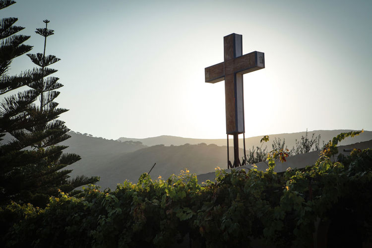 Cross on the vine overgrown roof of the Monastery of Kipoureon Belief Religion Mountain Spirituality Cross Sky Plant Nature Tranquility Tranquil Scene Beauty In Nature No People Scenics - Nature Outdoors Growth Tree Symbol Religious Equipment Vine Hills Monastery