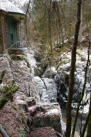 It's Cold Outside Winter Cold Hermitage Dunkeld Scotland Scottishrowan Followfriday