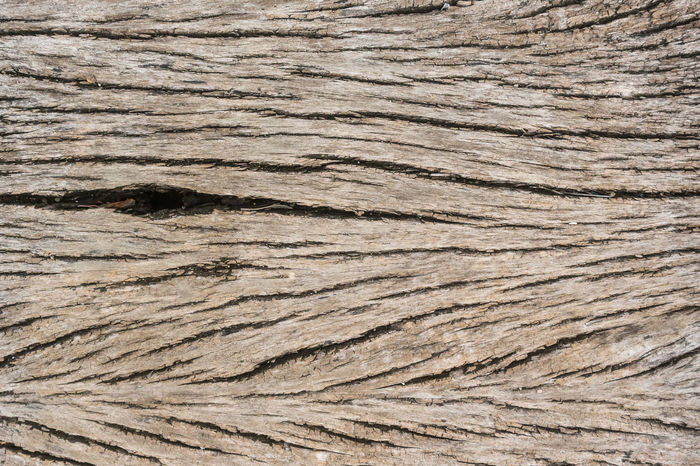 Abstract Backgrounds Brown Building Exterior Carpentry Cereal Plant Close-up Hardwood Log Material Nature No People Outdoors Pattern Plank Textured  Timber Tree Wood - Material Wood Grain Wood Paneling