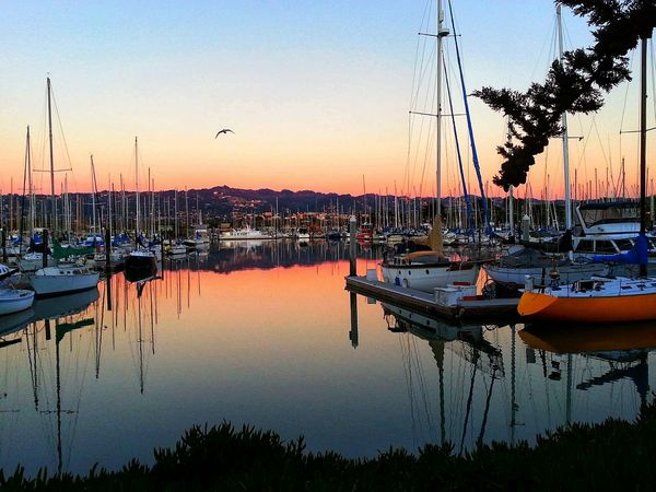 Reflection Sunset Water Nautical Vessel Tranquility Scenics Eye Em Nature Lover Sailboats Marina Berkeley, CA Water Reflections WestCoast Beauty In Nature Moored Travel Destinations Boating