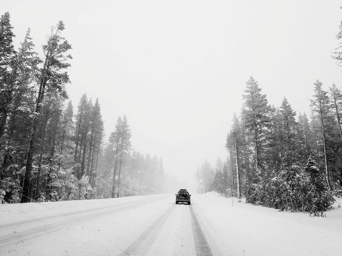 Car Moving On Snow Covered Road Amidst Trees During Winter